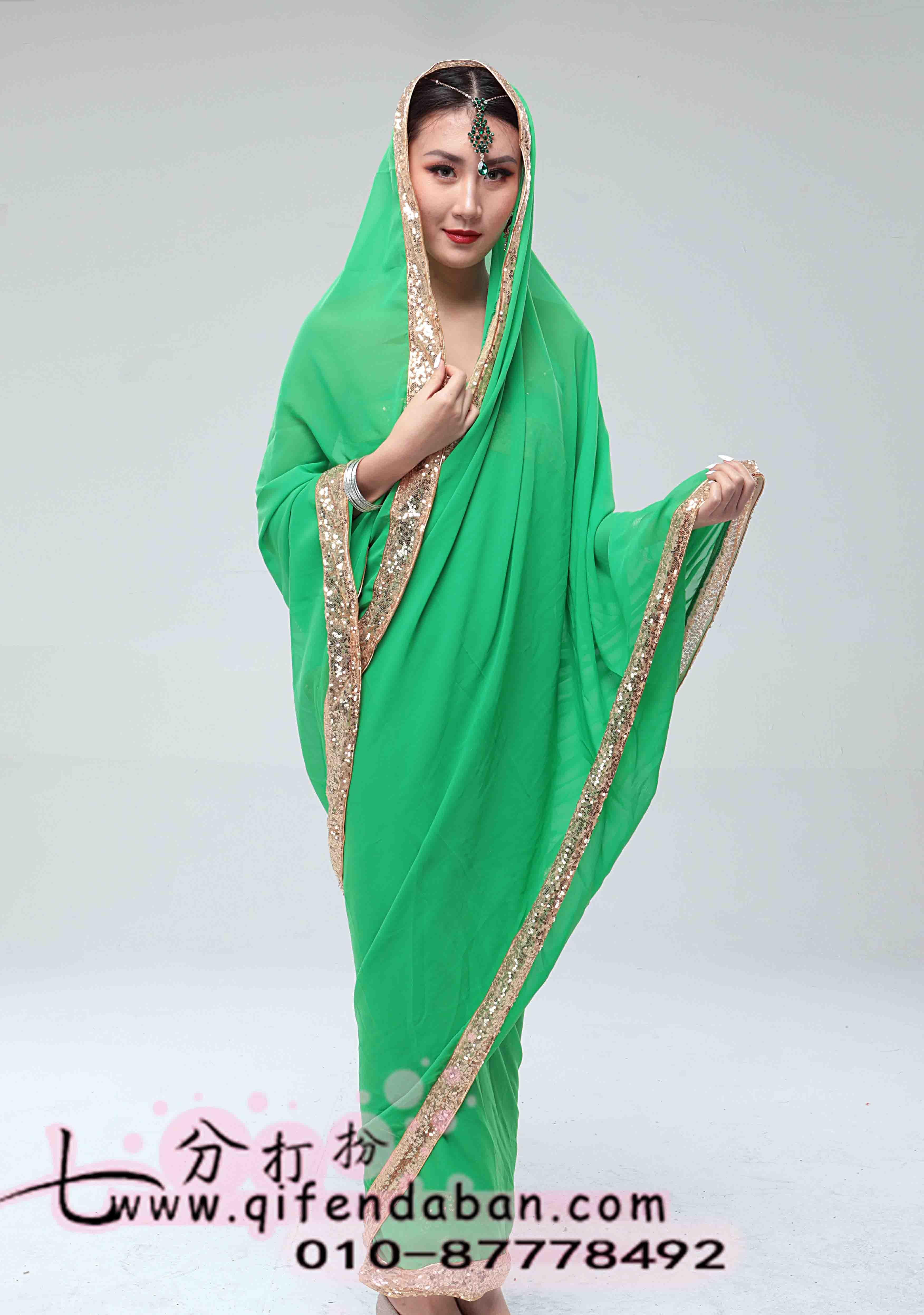 印度沙丽 (5)